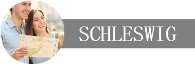 Deine Unternehmen, Dein Urlaub in Schleswig Logo